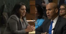 Conservative lawyer Neomi Rao was challenged by Cory Booker over her criticism of the ruling that legalised gay sex