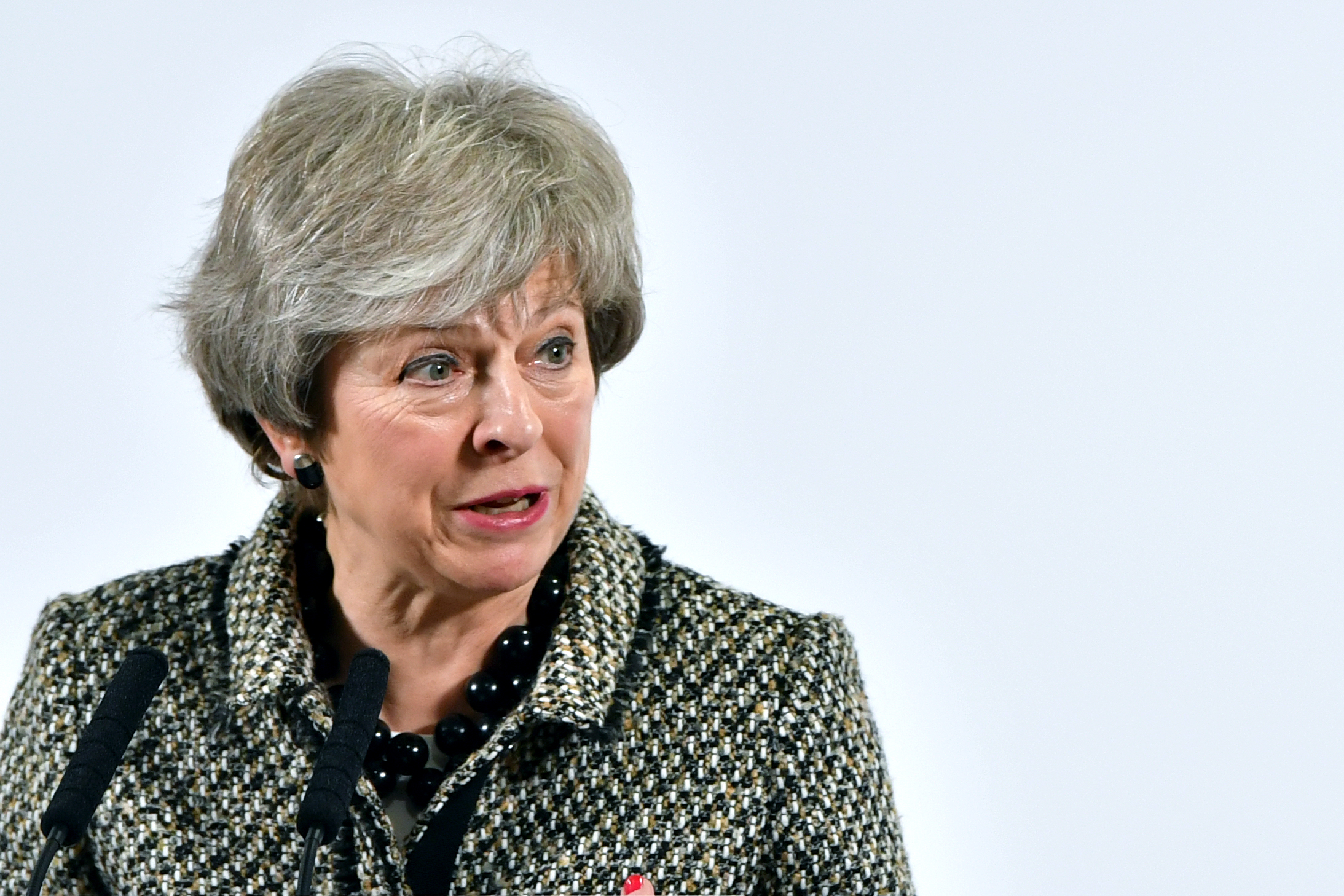 Theresa May (Matt Cardy/Getty Images)