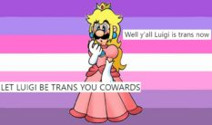 A piece of art showing Super Mario Bros. character Luigi as a trans woman, with floating tweets
