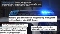 A string of media outlets claimed Caroline Farrow was being investigated for 'misgendering'