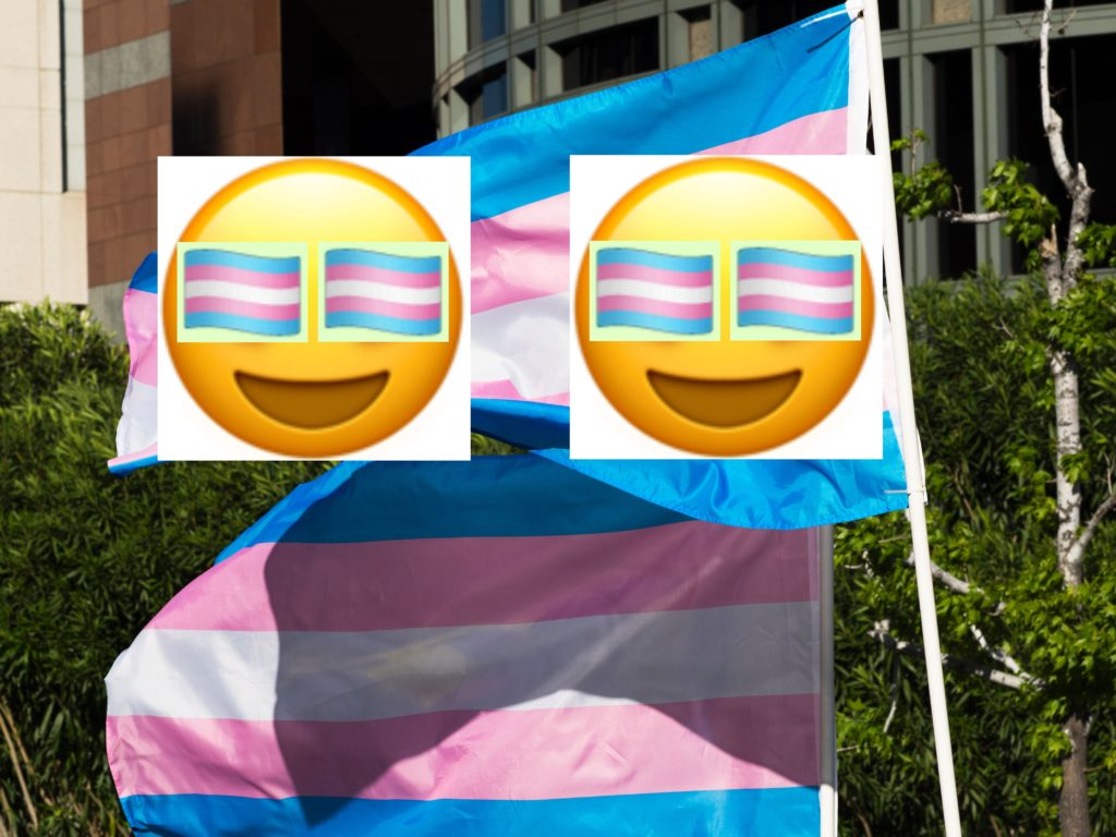 Apple has finally rolled out the trans Pride flag emoji to iPhone