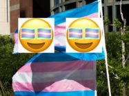 Transgender pride flags flutter in the wind at a gathering to celebrate International Transgender Day of Visibility, March 31, 2017 at the Edward R. Roybal Federal Building in Los Angeles, California. They are overlaid with transgender Pride flag emojis. International Transgender Day of Visibility is dedicated to celebrating transgender people and raising awareness of discrimination faced by transgender people worldwide.