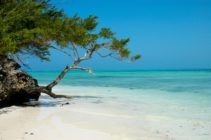 Pongwe Beach in Zanzibar, where ten men were arrested for being gay.