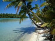 cook islands flickr