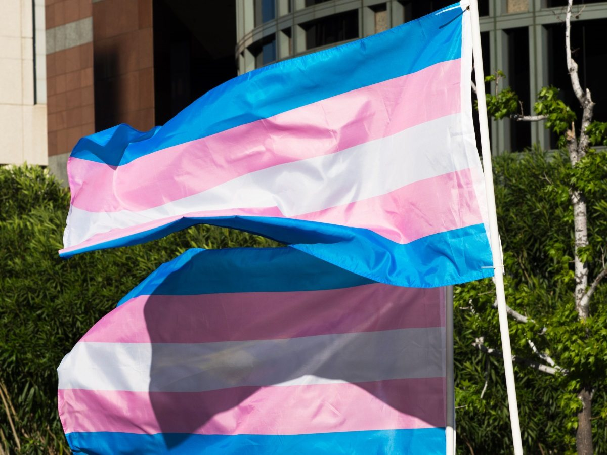 Trans pride flags flutter in the wind at a gathering to celebrate International Transgender Day of Visibility, March 31, 2017 at the Edward R. Roybal Federal Building in Los Angeles, California. International Transgender Day of Visibility is dedicated to celebrating transgender people and raising awareness of discrimination faced by transgender people worldwide. / AFP PHOTO / Robyn Beck (Photo credit should read ROBYN BECK/AFP/Getty Images)