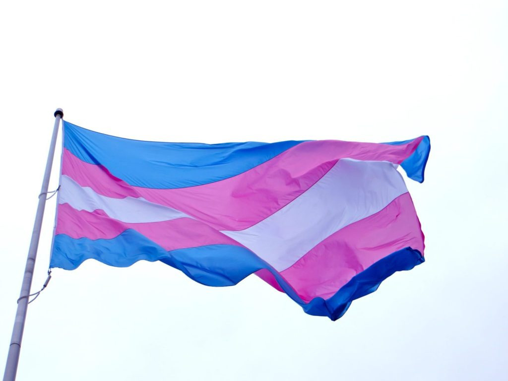 What is a TERF? Debate over transgender rights and Gender