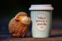 Today is gonna be a good day cup next to smiling sheep