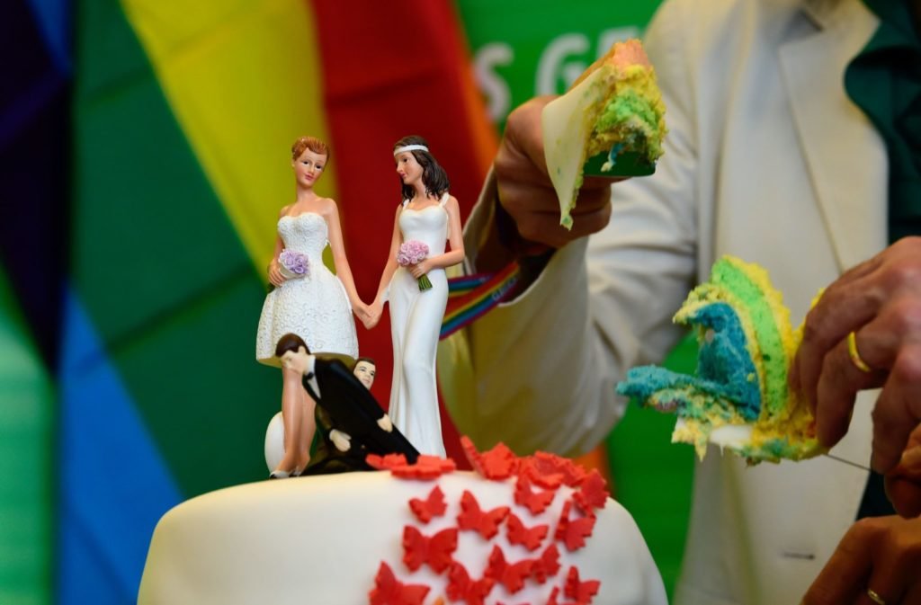 Delegates of the Greens cut a wedding cake in rainbow colors