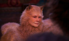 Judi Dench as a cat