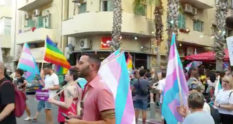 Protestors holding rainbow and trans flags
