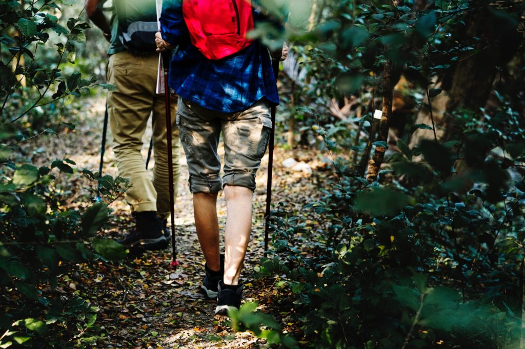 A close-up of two men's legs walking through a wooded area