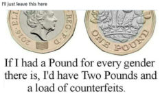 Two pound coins with the caption: If I had a pound for every gender there is, I'd have two pounds and a load of counterfeits.