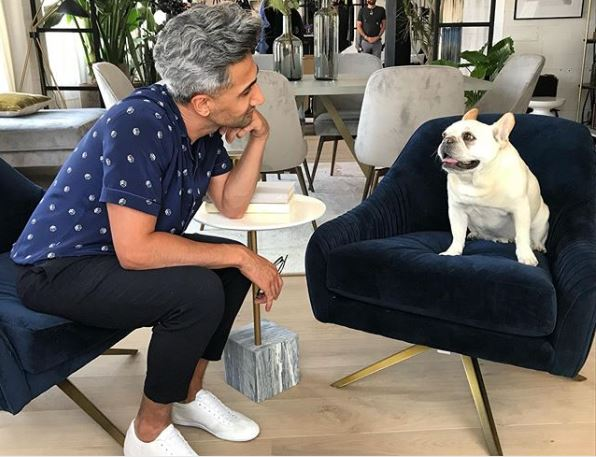 Queer Eye: French bulldog and honorary member of Fab Five has died