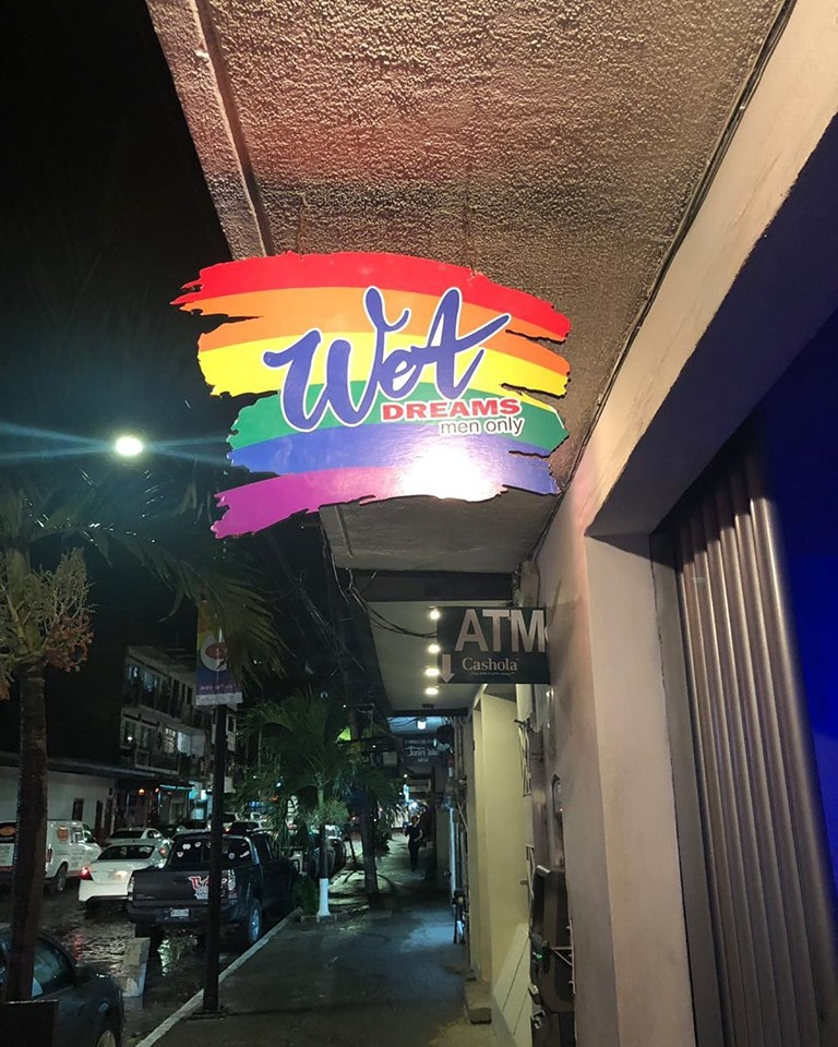 Wet Dreams in Puerto Vallarta (Wet Dreams)