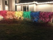Lexi Magnusson embellished her front-lawn bushes with Pride flag-themed Christmas lights. (reddit)