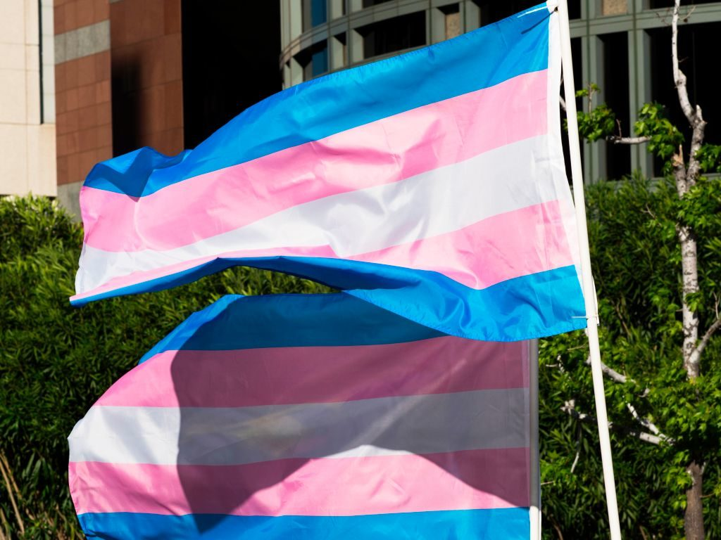 Half of trans and non-binary people want to abolish legal gender categories