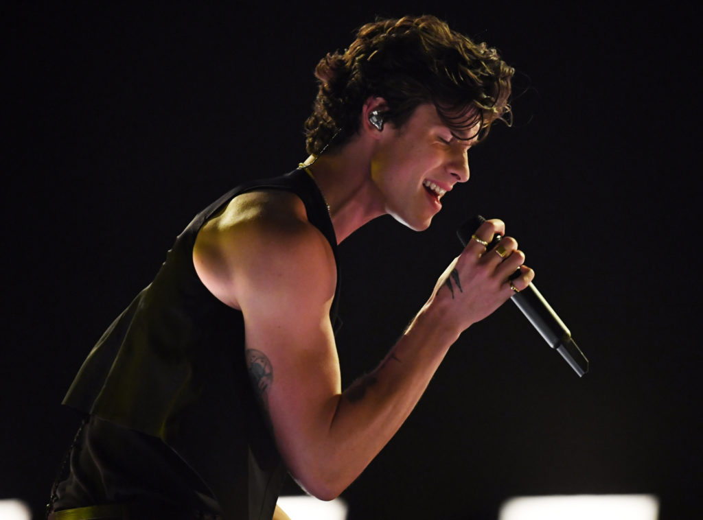 Shawn Mendes. (Kevin Winter/Getty Images for dcp)