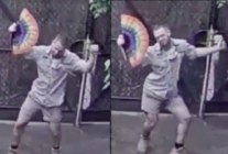 Melbourne Zoo: Zookeeper's giraffe enclosure dance wins legions of fans