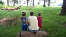 LGBT adoption: Same-sex couple share their 'amazing journey' to twins
