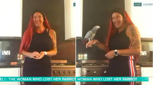 Chanel the parrot