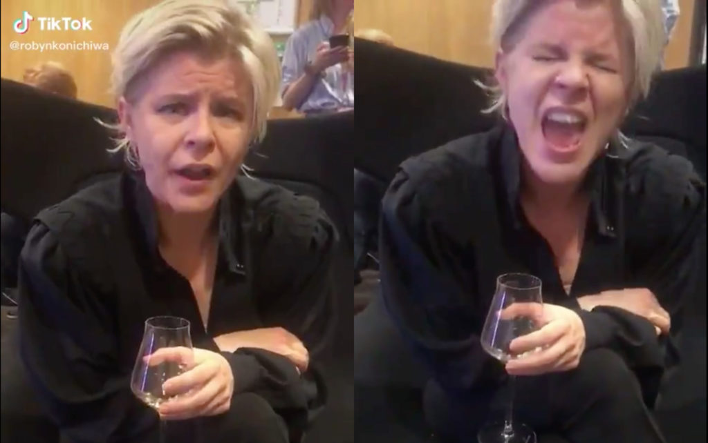Robyn appeared to impersonate her often wildly drunk, widely homosexual British fanbase and they all felt vert, very attacked. (Screen captures via TikTok)