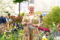 Dame Judi Dench was not a fan of Cats