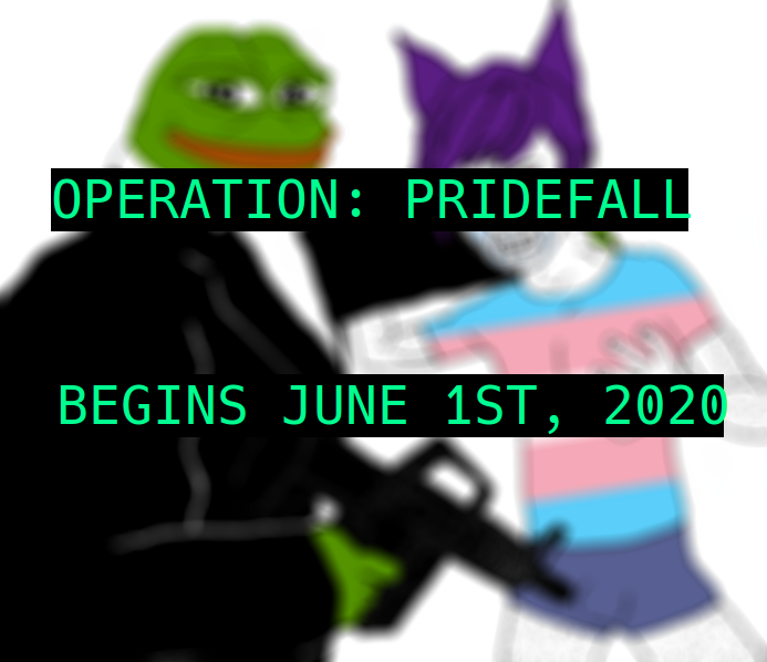 One of the memes contained in the promotional material folder. It shows a gun-toting Pepe the Frog (L) and Wojack wearing a trans Pride flag t-shirt. (4chan)
