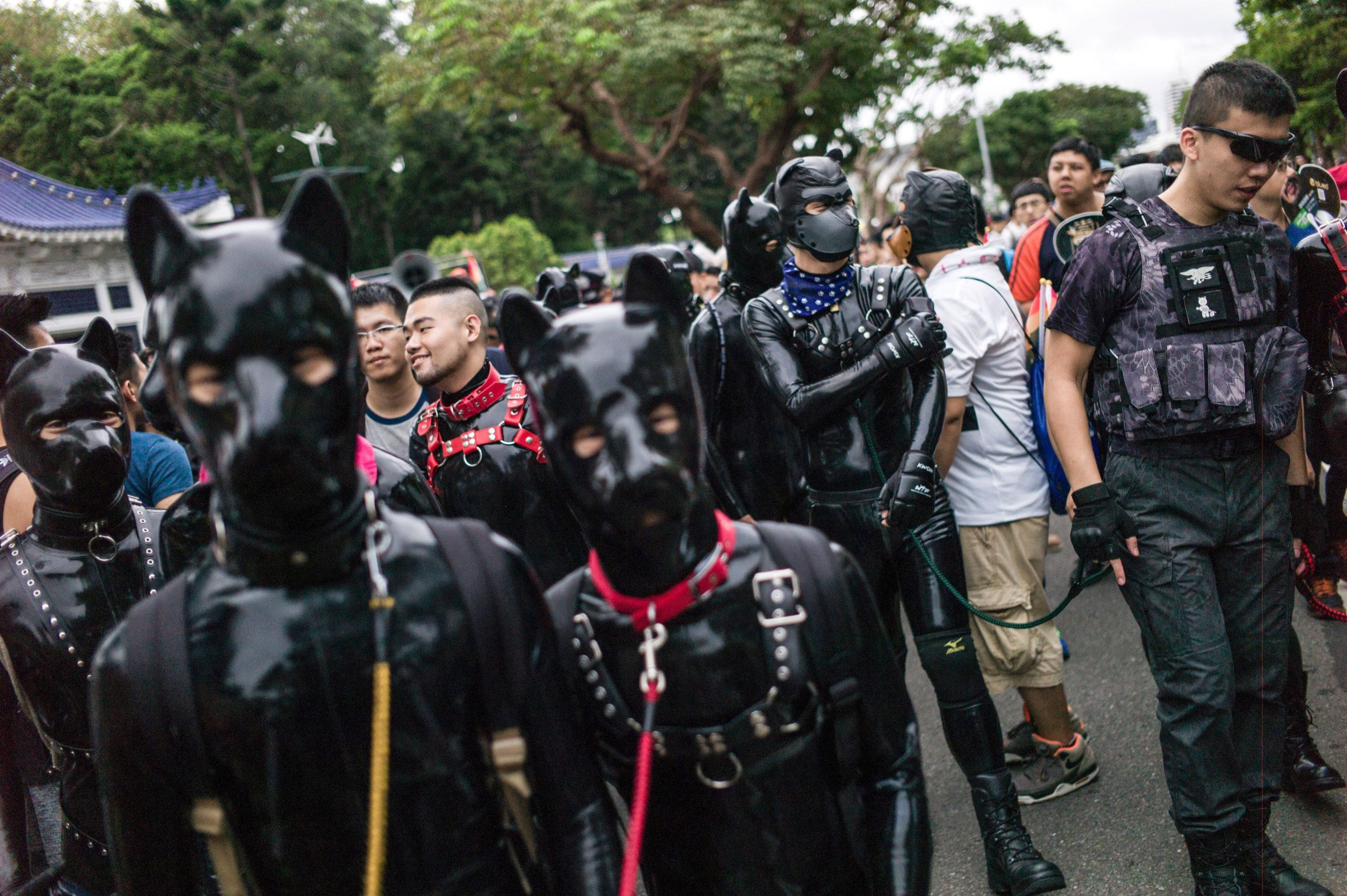 Leather pups at Tapei Pride in Taiwain