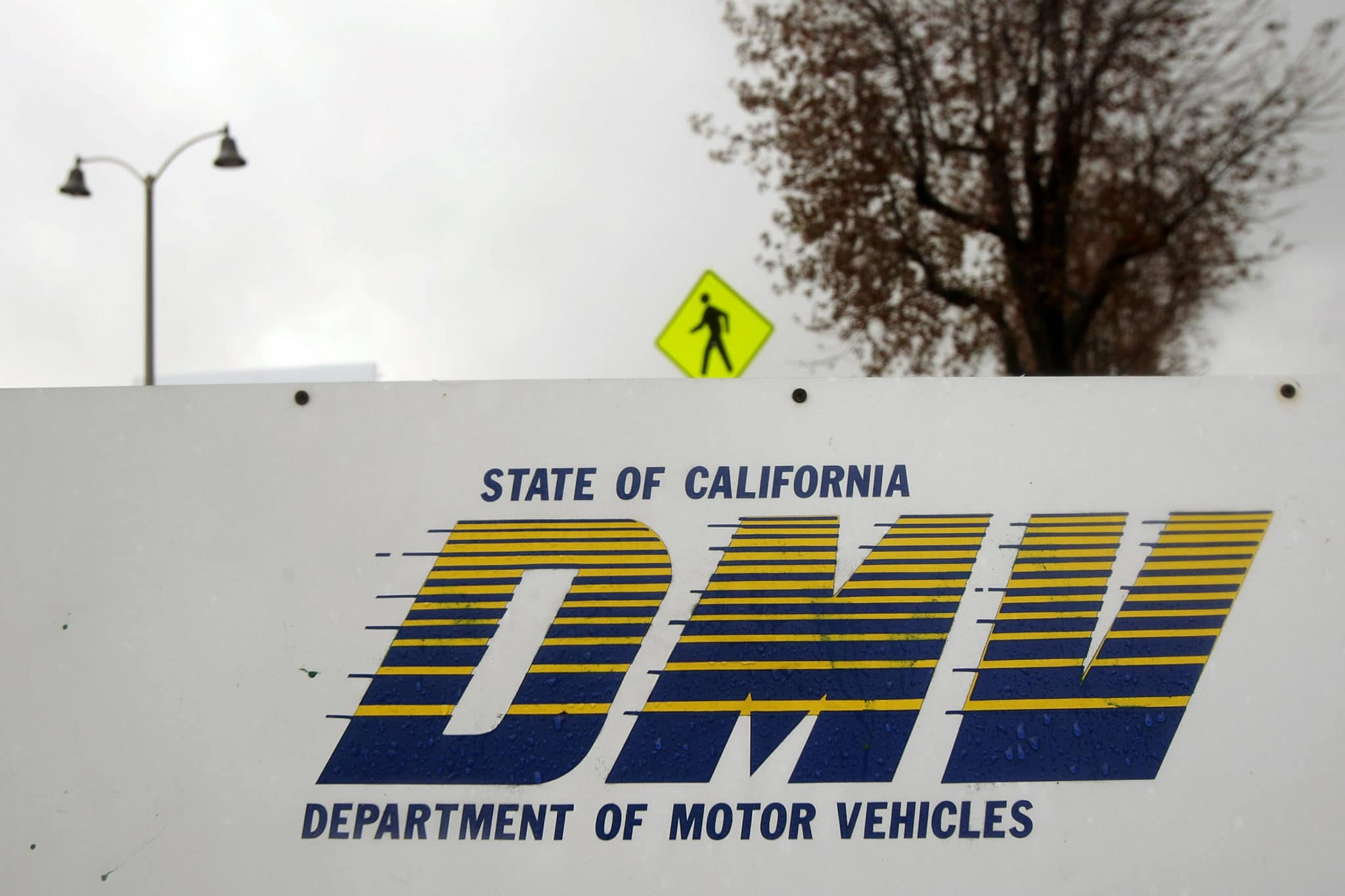 A gay man took on the California Department of Motor Vehicles (DMV) over the QUEER license plate