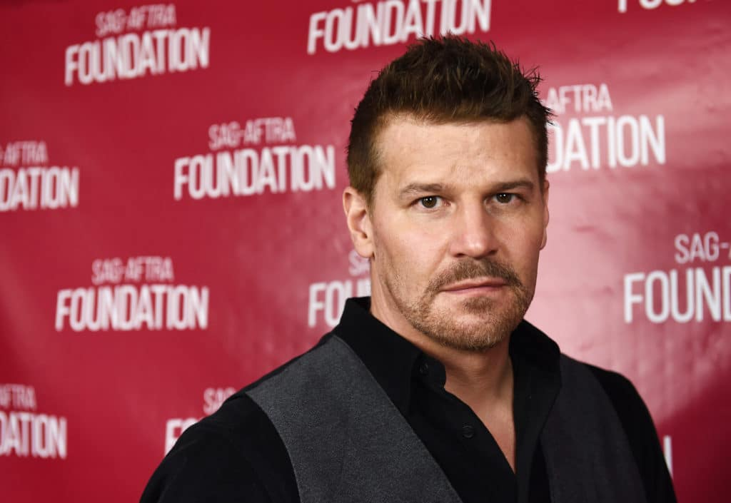 Headshot of David Boreanaz in a black shirt and grey waistcoat