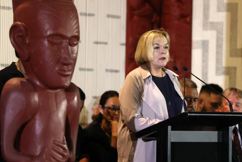 judith collins new zealand national party