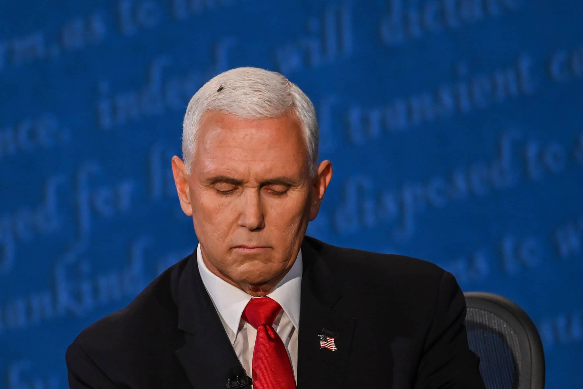 A fly rests on the head of Mike Pence as he takes notes during the vice presidential debate against Kamala Harris