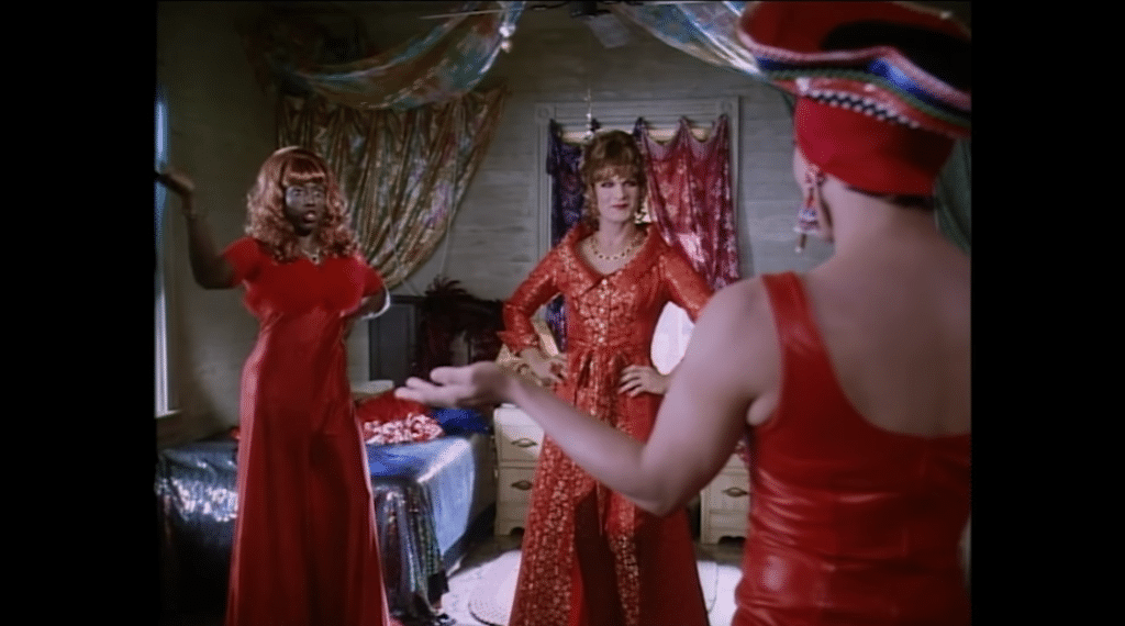 To Wong Foo, Thanks For Everything features loads of iconic cameos. (YouTube)