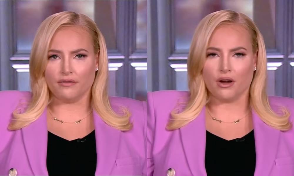 Meghan McCain has something not entirely wrong to say about 'MAGA sausage fest'