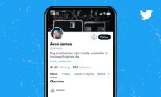 An iPhone showing up a mock Twitter profile with a section for pronouns