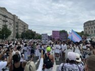 New York: Thousands protest 'state of emergency' for trans youth