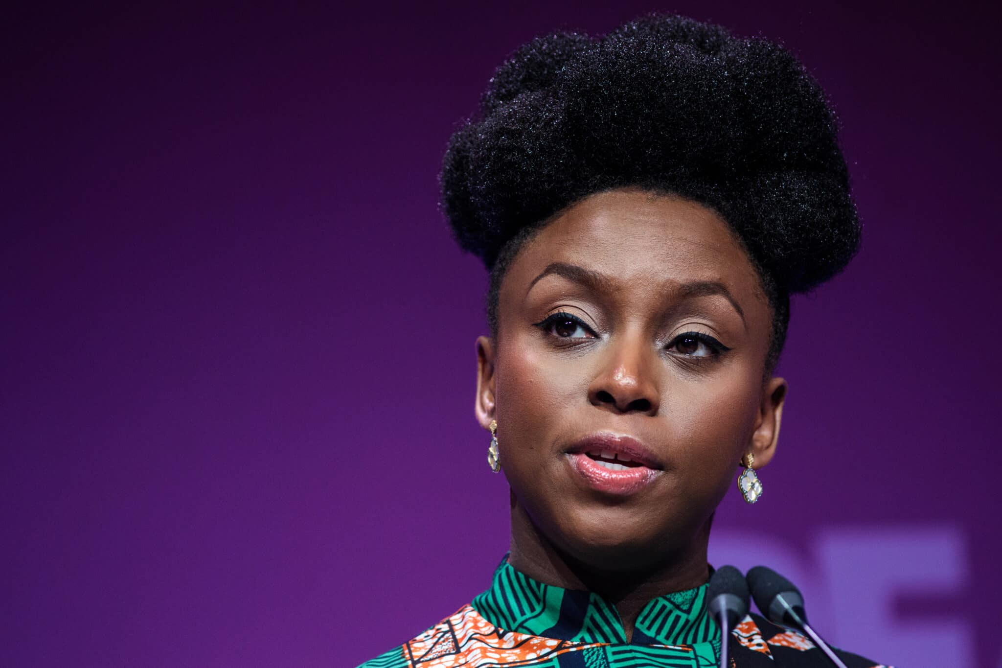 Author Chimamanda Ngozi Adichie pens lengthy essay condemning 'two queer writers'