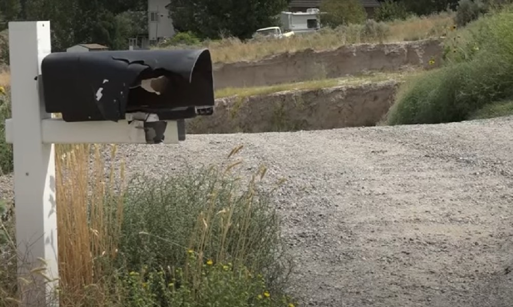 A mailbox that's been blown up by fireworks