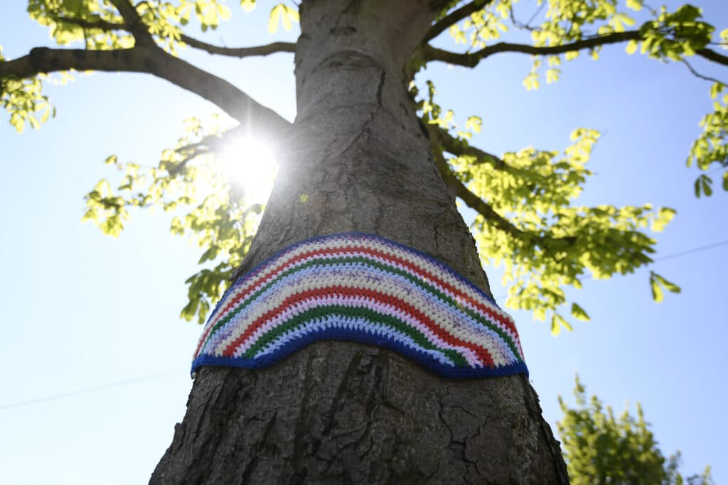 A tree with a knitted rainbow hanging on its trunk